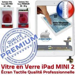 Réparation Filtre Bouton Monté Caméra Oléophobe Mini2 Home 2 Fixation Ecran Tablette Tactile A1489 Vitre Verre Nappe iPad Blanc A1491 B MINI Adhésif A1490