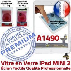 Nappe Oléophobe Filtre Vitre Caméra Verre Tactile Ecran Home A1490 Adhésif Blanc Mini2 Monté Tablette Bouton Fixation Réparation iPad