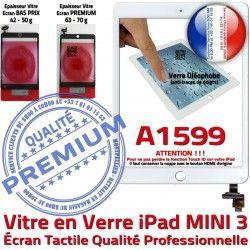 Tablette Blanc Verre Caméra Nappe A1599 Tactile Monté Fixation Vitre Ecran Home Bouton Réparation iPad Oléophobe Filtre Mini3 Adhésif